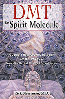 Book: DMT: The Spirit Molecule: A Doctor's Revolutionary Research into the Biology of Near-Death and Mystical Experiences