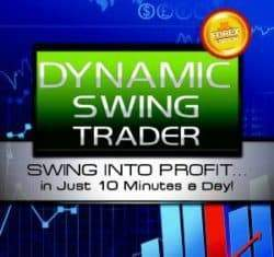 Netpicks Dynamic Swing Trader (MT4) 2019 (latest)