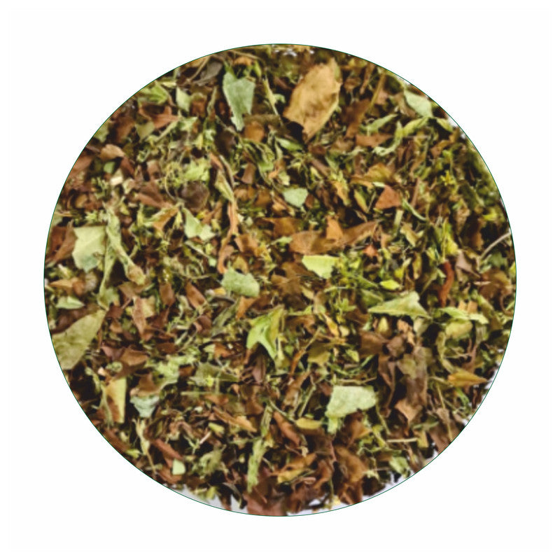 Seekanapalli Organics Apple Malus Green Tea 1000 gram