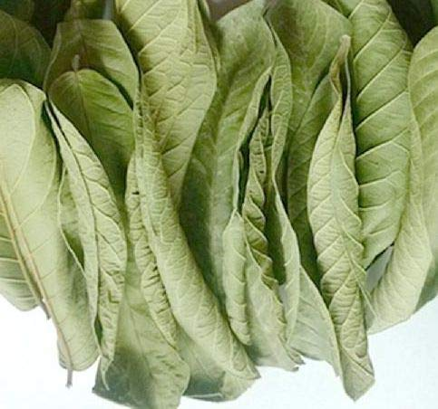 SEEKANAPALLI ORGANICS MANGO LEAVES 300 G