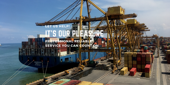 International Freight Shipping. Container Loading. Port. PRO Logistics