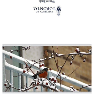 U of T - Winter Birds U of T Greeting Card