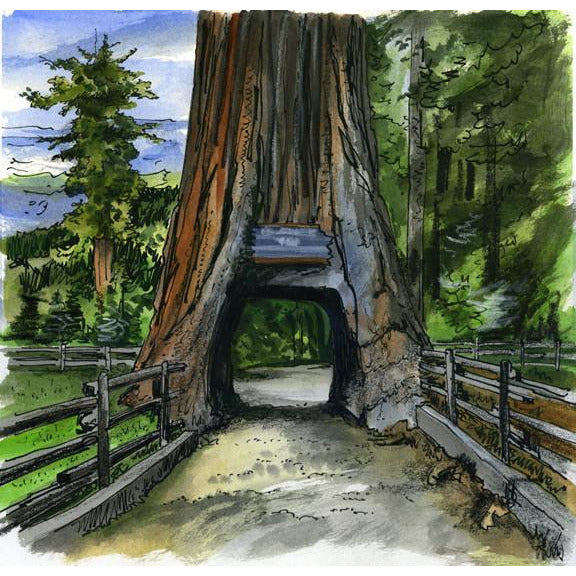 Washington State, U.S.A. by Artist Illustrator David Crighton Art