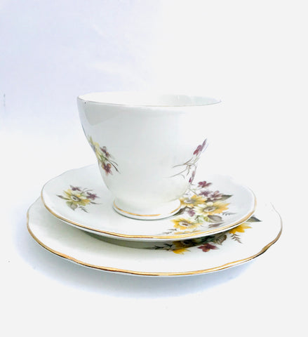 Duchess Susie Tea Cup Saucer and Plate Trio