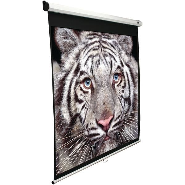 100 Manual Pull-down B Series Projection Screen (1:1 format; 71 x 71) - Projectors