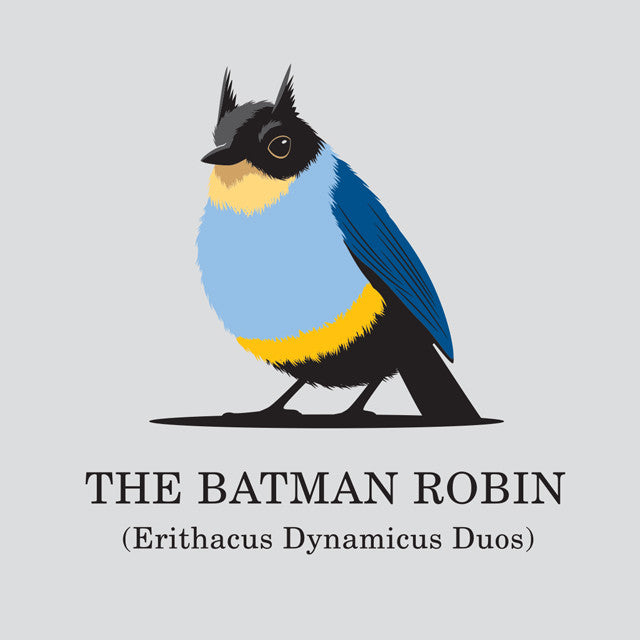 The Batman Robin Women's T-Shirt - Glennz Tees