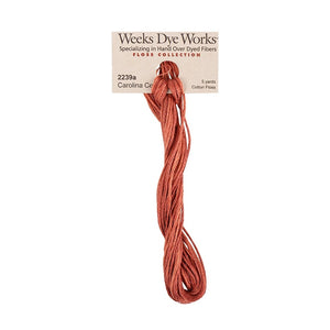 Carolina Cecil | Weeks Dye Works - Hand-Dyed Embroidery Floss