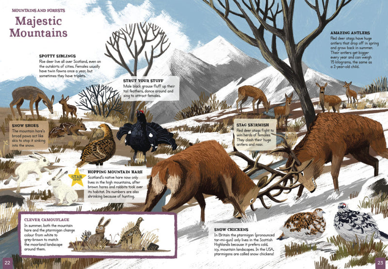 An Amazing Animal Atlas of Scotland