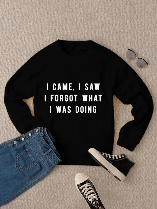 """I Came I Saw. I Forgot What I was Doing""Sweatshirt"