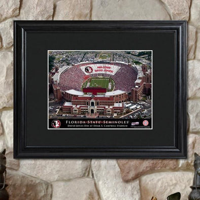 Personalized College Stadium Framed Print-