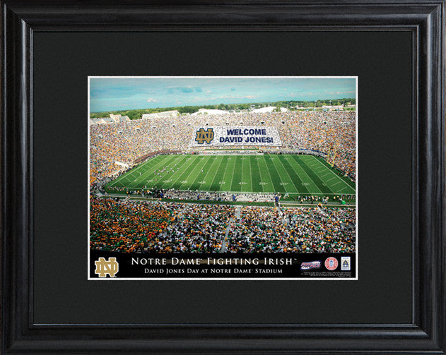 Personalized College Stadium Framed Print