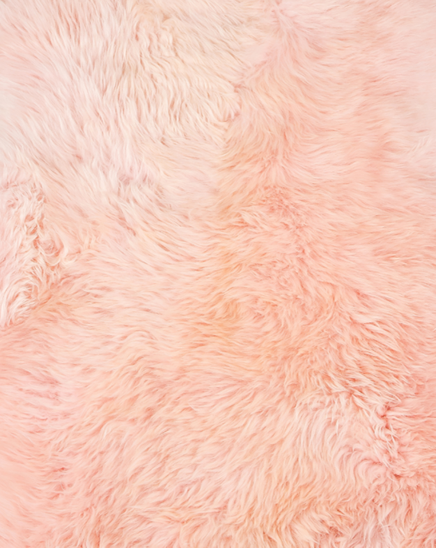 NZRugz Pink Color Real Sheepskin Fur Area Rug - 2' x 3'