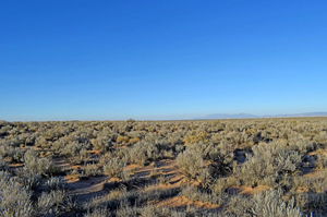 Great Investment Opportunity! New Mexico - 0.25 Acre in Los Lunas, New Mexico (Lot: 72) - Own for $39 Down, $39 Per Month - Once Upon a Brick Inc. Land Investments