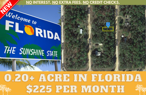 0.20 Acres in Putnam County, Florida 32148 (Lots 46: Block 5, Cooper Lake Estates) - Own for $225 Per Month - Once Upon a Brick Inc. Land Investments