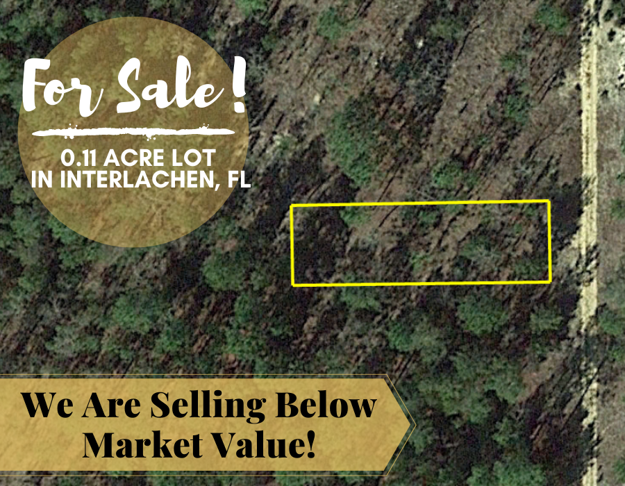 0.11 Acres in Putnam County, Florida 32148 - Own for $120 Per Month - Once Upon a Brick Inc. Land Investments