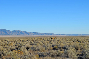 0.25 Acre in Los Lunas, New Mexico (Rio Del Oro) - Own for $800 or $59 Per Month - Once Upon a Brick Inc. Land Investments