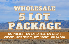 Load image into Gallery viewer, Wholesale Land Package of 5x Quarter-Acre New Mexico Parcels - $175 Per Month