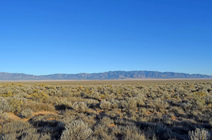 2 Lots: 0.50 Acre in Los Lunas, New Mexico (Rio Del Oro) - Own for $75 Down, $75 a Month - Once Upon a Brick Inc. Land Investments