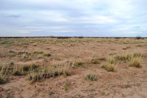 1+ Acres in Sunshine Valley. Luna County, New Mexico! - Own for $250 Per Month or $7,000 - Once Upon a Brick Inc. Land Investments