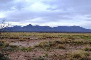 0.50 Acres in Sunshine Valley. Luna County, New Mexico! - Own for $120 Per Month or $4,000 - Once Upon a Brick Inc. Land Investments