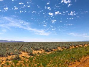 Wholesale Land Package of 10x Quarter-Acre New Mexico Parcels - $399 Down - Once Upon a Brick Inc. Land Investments