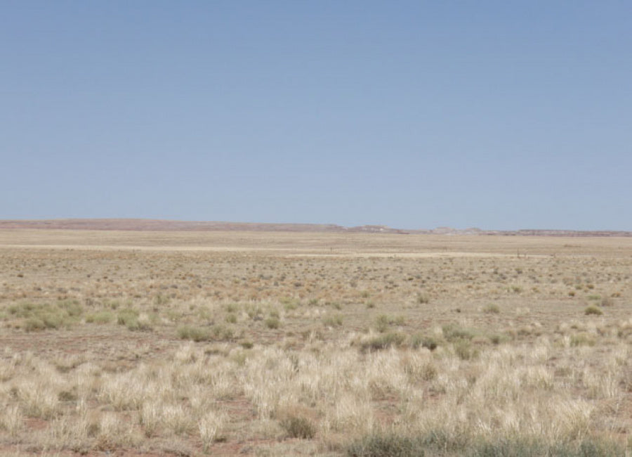 0.92 Acres for Sale in Holbrook, AZ! $120 down and $120 a month for 48 months - Once Upon a Brick Inc. Land Investments