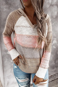 Sherobikini Hollow Out Knitted Long Sleeve Hooded Sweater