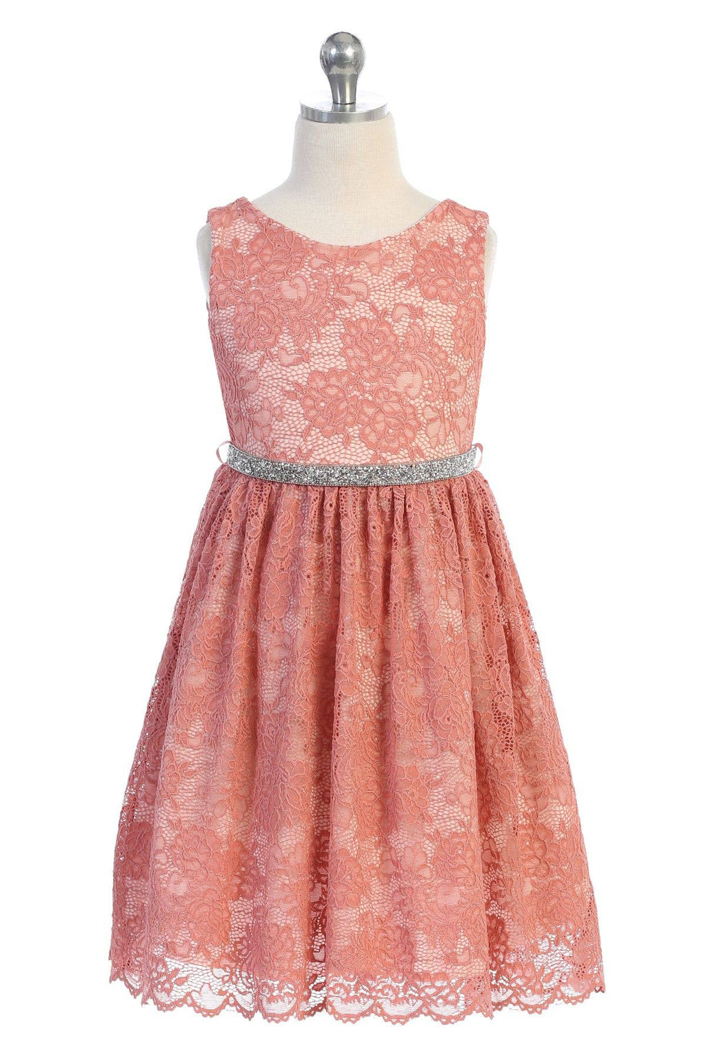 Coral Stretch Lace Dress