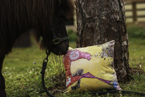 """Magic"" Cushion - Shanah Equestrian"