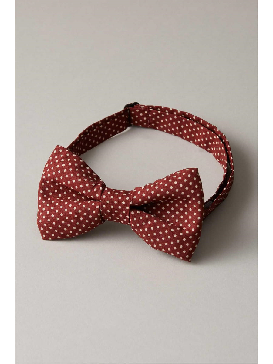 Boys Mini Polka Dot Bow Tie
