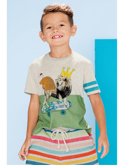 Boys This Lion's Flyin' Tee