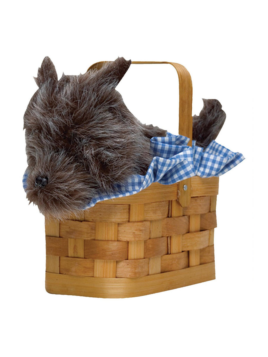 Dog in a Basket