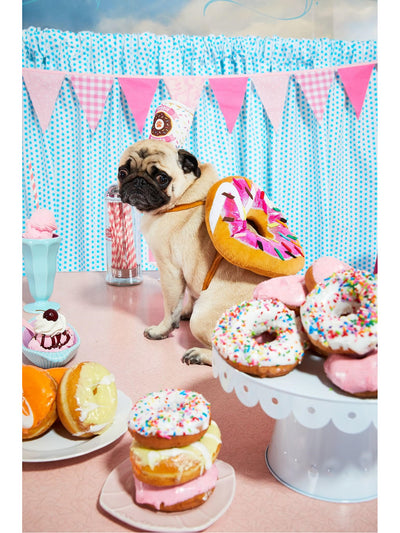 Donut & Coffee Costume for Dogs  pin alt1