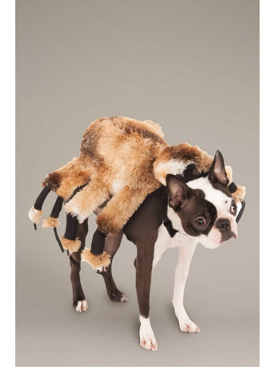 Giant Spider Costume for Dogs