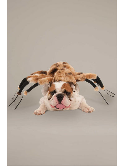 Giant Spider Costume for Dogs  bro alt1