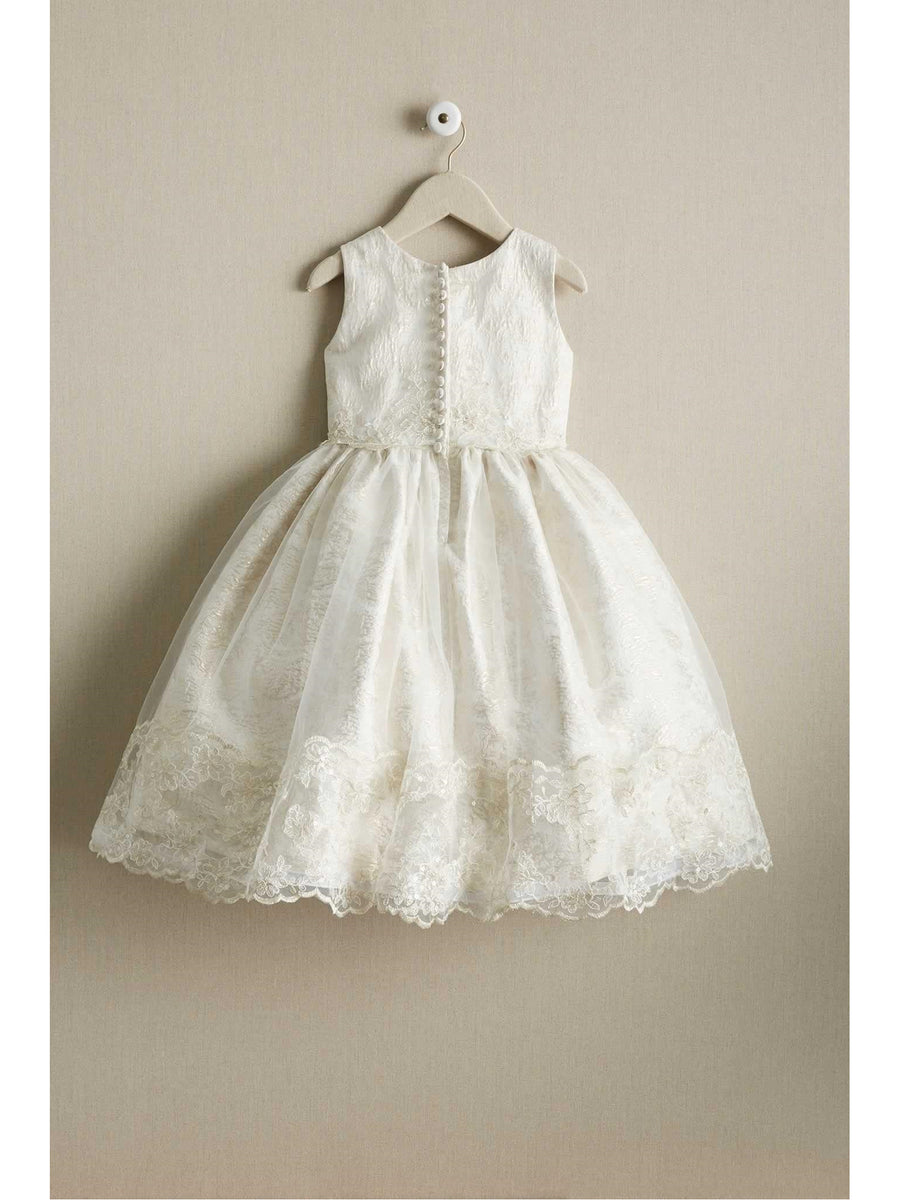 Girls Beautiful Brocade & Lace Dress