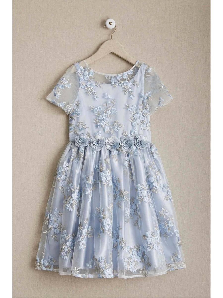 Girls Blue Tea Garden Dress