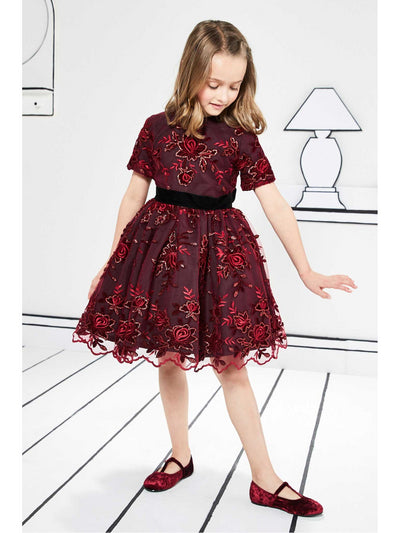 Girls Embroidered Lace Holiday Dress