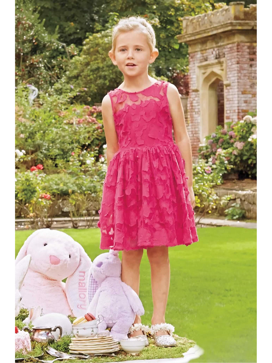 Girls Lace Party Dress