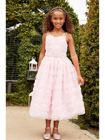 Girls Swirly Pink Roses Dress