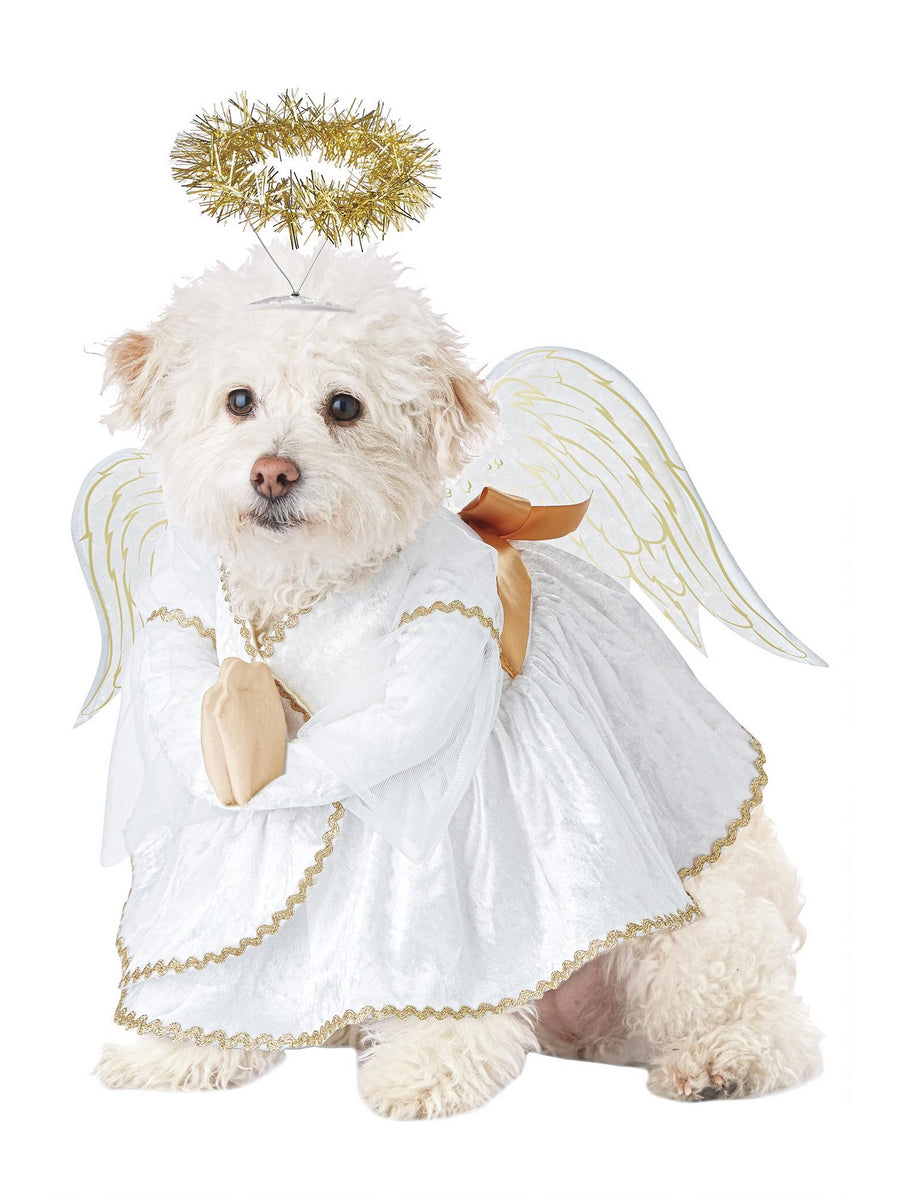 Heavenly Hound Costume for Dogs
