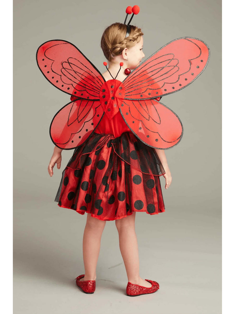 Ladybug Costume Play Set For Girls