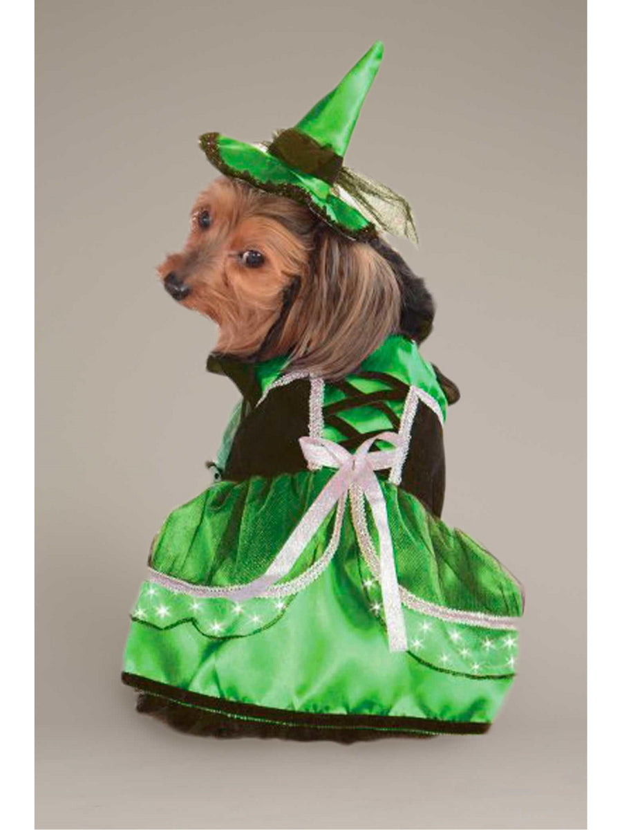 Light-up Green Witch Costume for Dogs