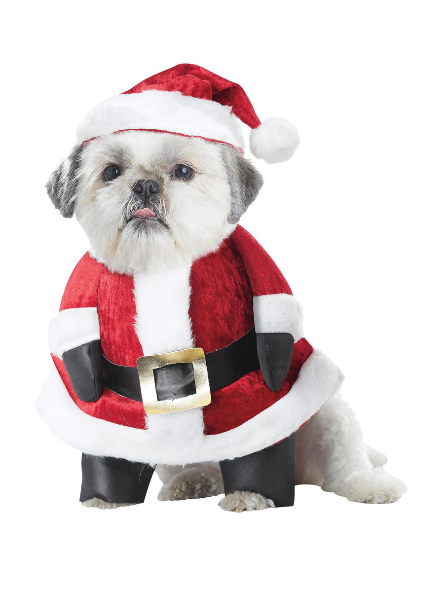 Santa Paws Costume for Dogs