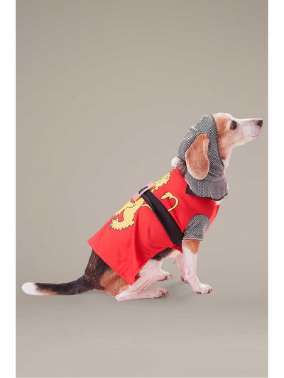 Sir Barks-a-Lot Costume for Dogs