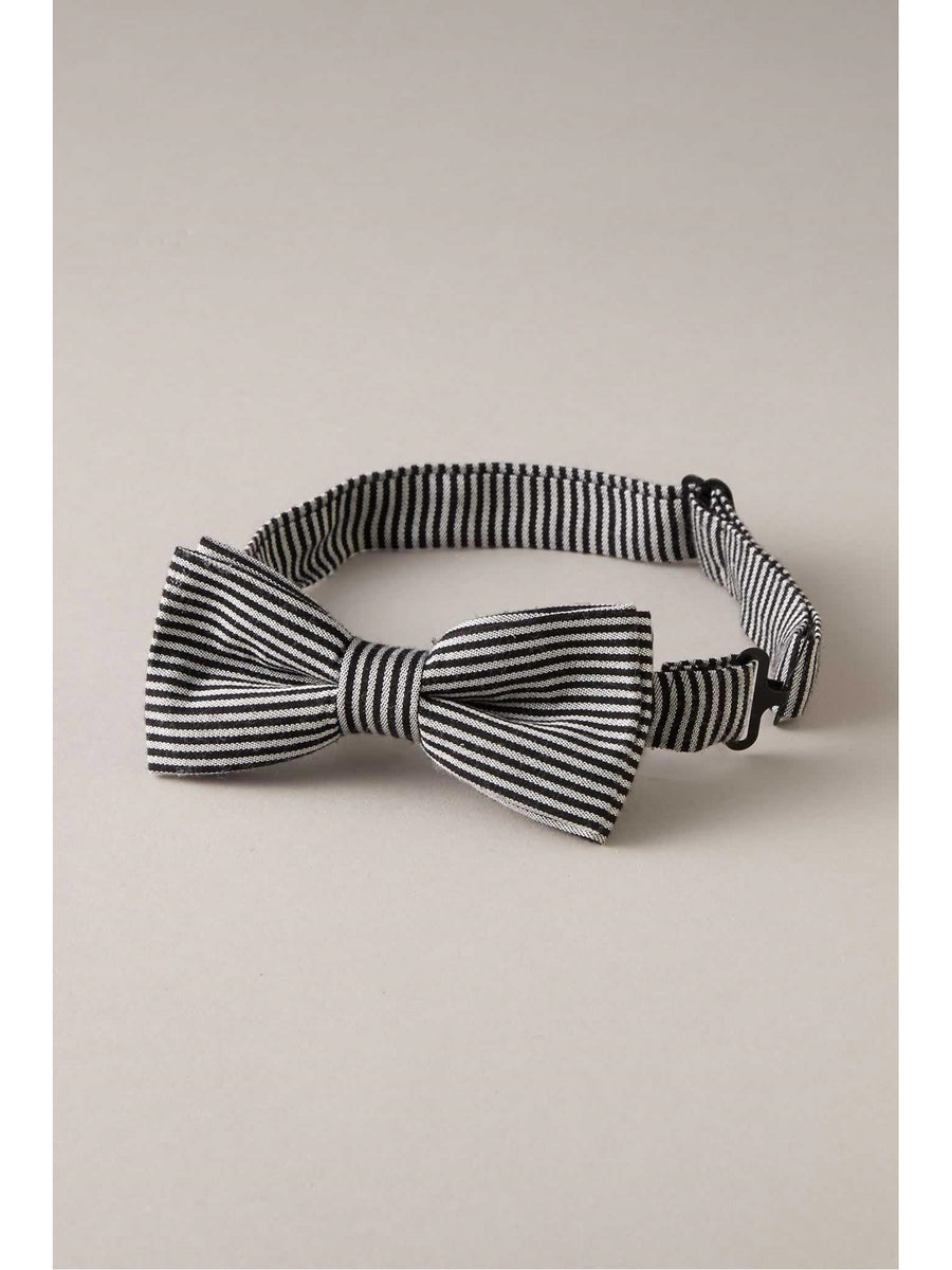 Boys Stripe Bow Tie