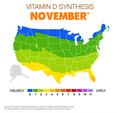 Vitamin D synthesis in November US map