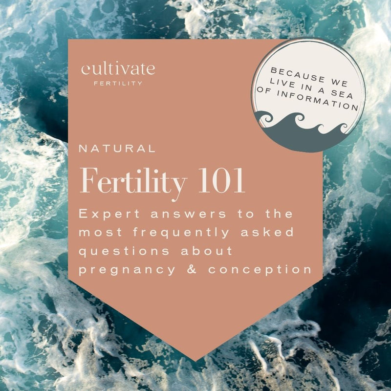 Fertility 101 Course