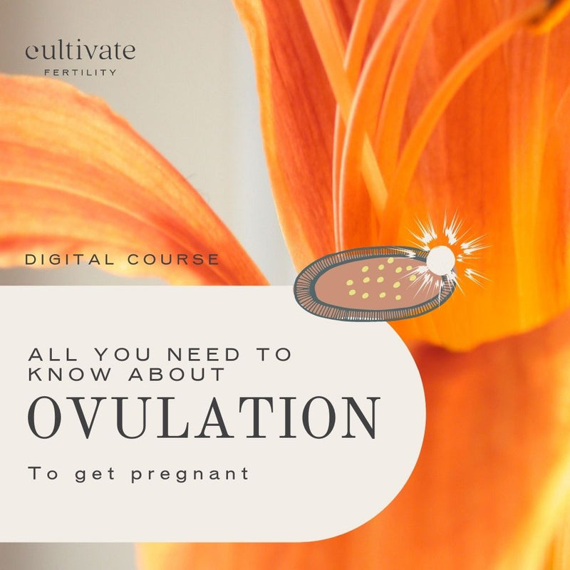 ALL YOU NEED TO KNOW ABOUT OVULATION TO GET PREGNANT