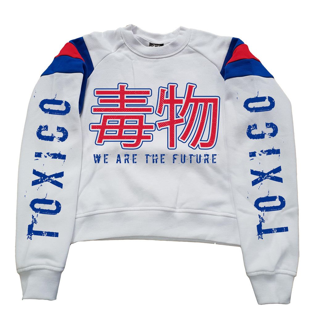 We Are The Future Striped Sweatshirt - Toxico Clothing